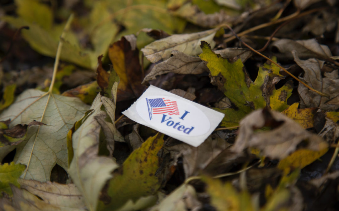 On Voting and Fear